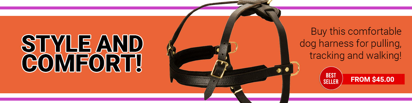 Light Weight Leather Harness Great for Pulling/Tracking/Walking